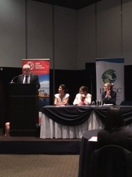 Panel inaugural: Peter Luhmann, GIZ en México; Anne Hammill, IISD; Amparo Martínez, INECC; Erin Silsbe, Environment and Climate Change Canada.